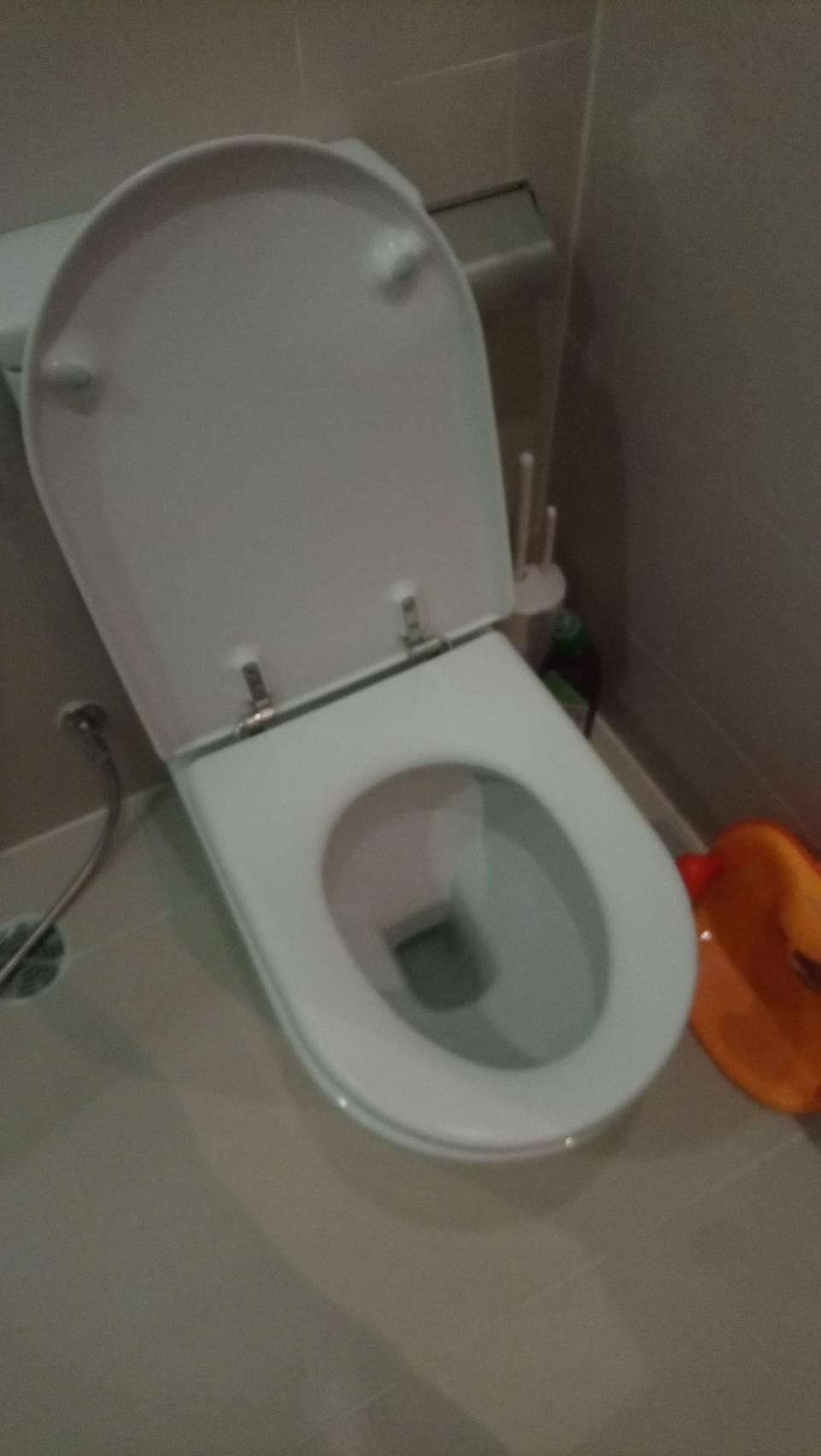 いつも清潔✨ シャワートイレのご紹介